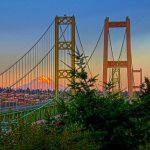 bridge_colored