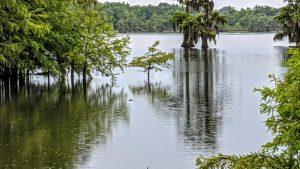 A quick stopover in Louisiana